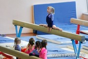 ДЮСШ по спортивной гимнастике